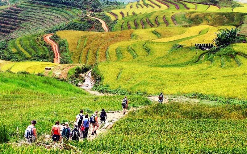 Convivencia-y-trekking-Vietnam