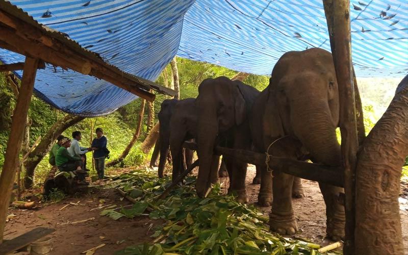 Turismo-Responsable-y-sostenible-Tailandia