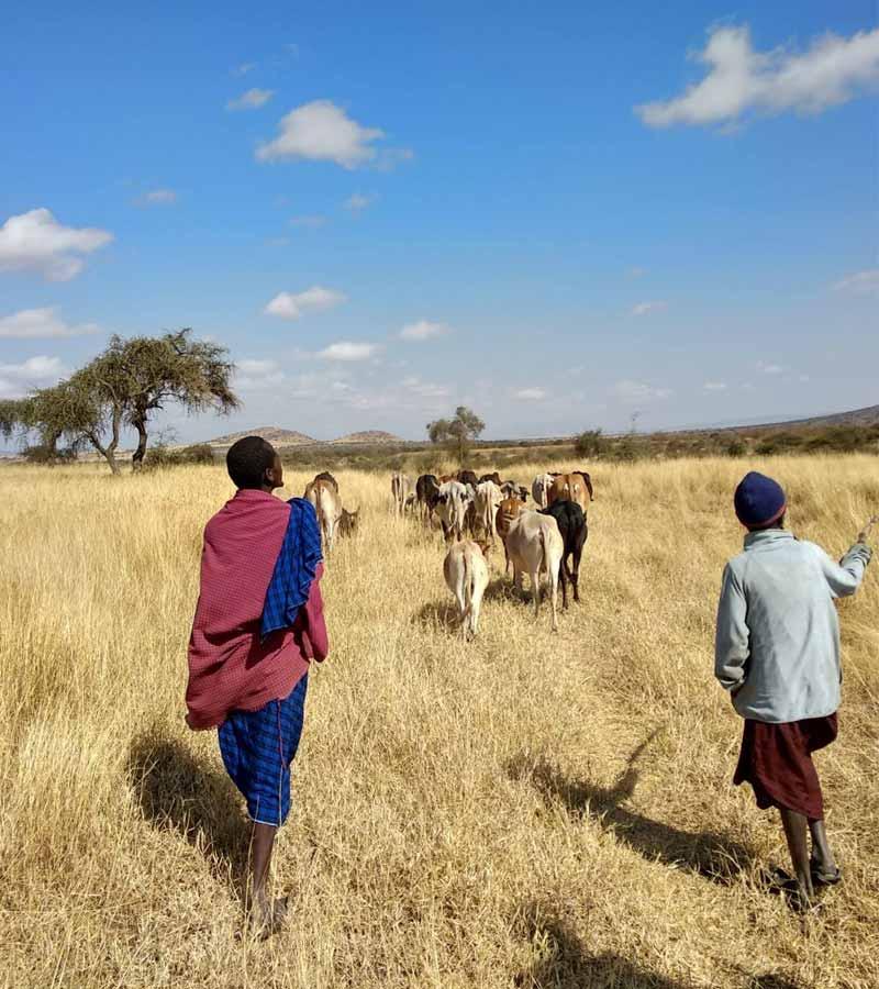 Convivencia-y-turismo-responsable-Masai-Tanzania