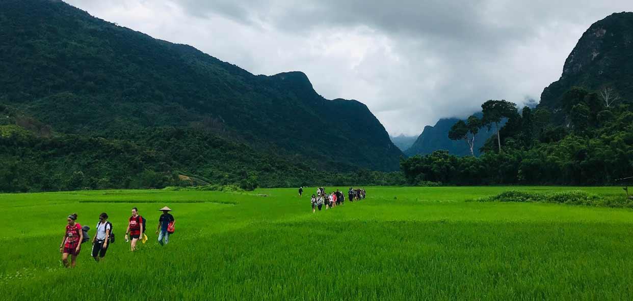 Trekking-Laos-arrozales