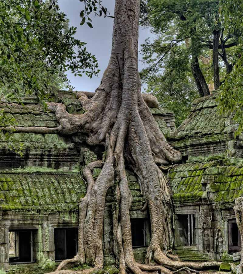 turismo responsable y sostenible Camboya