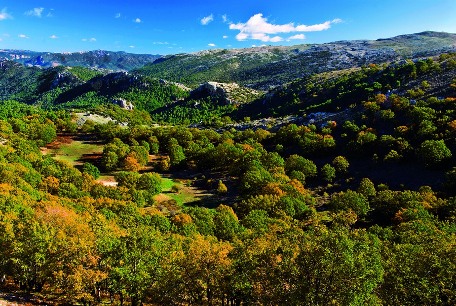 Formentera-Turismo-responsable-y-sostenible